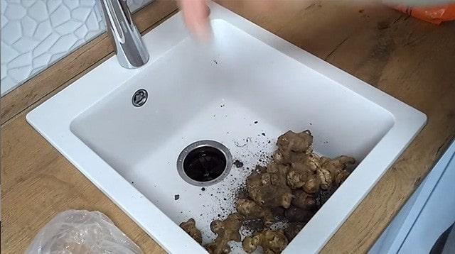Измельчаем топинамбур в диспоузере